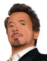 Robert Downey Jr. by muhamir