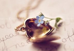 Little Locket 2 by hayzy