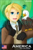 Card - America by Silberry