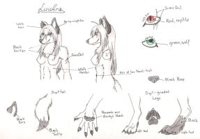 Luukra Charsheet by Catwolf