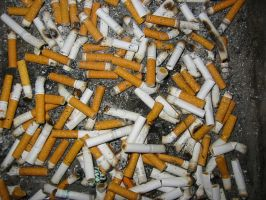 sci-stock - cigarette butts 1 by sci-fi-stock