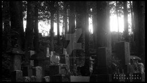 Graveyard Black and White by Wyatt-03