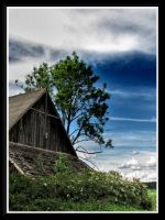 The old cow shed... by Yancis