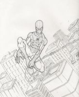 spider man by bam217