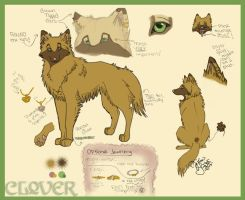 -Clover-  Reference Sheet by WolfessKiss