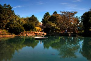 Japanese stroll garden by Staticpictures