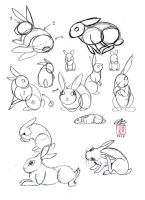 Draw a Rabbit by Diana-Huang