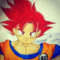 Goku(SSJ God!)!!! by dbzultrafan312000