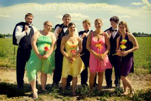 Wedding Party by Lovesong4no1