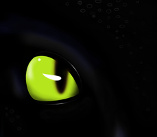 Eye of the Night Fury by LaDeary