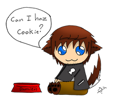Can I haz cookie? by lockheart9