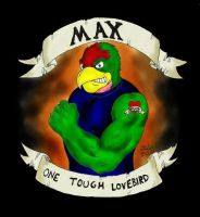Max, One Tough Lovebird by jmralls2001