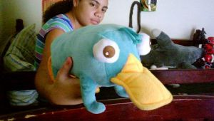 My Perry Plush by LillyCrystal