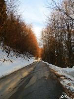 Road. by Saici