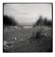 Formby by Talkingdrum