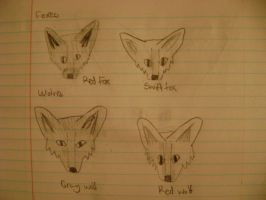 Canine Sketch sheet by Erinwolf1997
