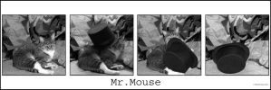 Mr. Mouse by MadejyalookGraphics