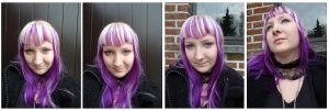 Purple hair portrait set by xNatje-stock