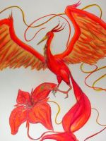 The Phoenix and her Flower by silverbamboo