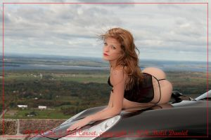 Porsche 2 Red Corset 176 by BoldDaniel