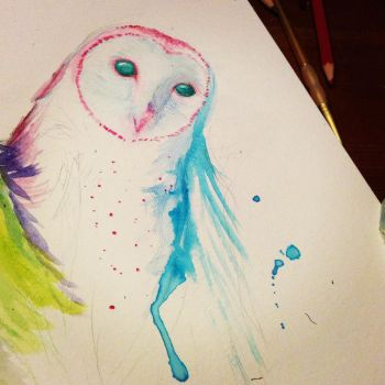 watercolor owl by idraw-bad