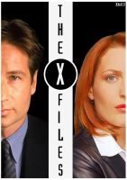 Mulder and Scully by Xfel13