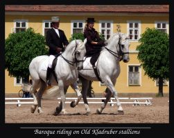 Baroque riding by sarming