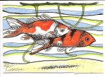 ATC Dottie McDermid Koi by claudiamm37