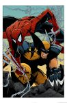 Spidey and Wolvie colors low res by BDixonarts