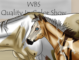 2015 WBS Quality In Color Show Breeders Showcase by angry-horse-for-life