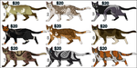 Cat/Design Adopts Batch 1 (4 OPEN) by Sterling-Kato