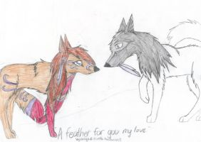 A feather for you my love by simplytresca