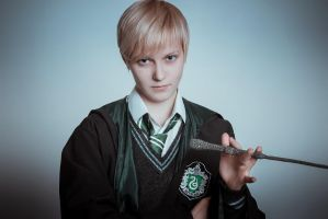 The true owner of the Elder Wand by RaulFaux