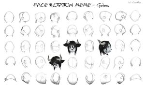 Face Rotation Meme - Gideon - 3/45 complete! by vixenkiba