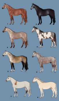 Horseadopts - 8 Shades of Grey by decors