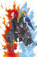 Fire and Ice by tsukinoyagami