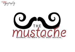 . movember by wassmo