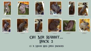 Oh Mr Rabbit_Pack 2 by GoblinStock