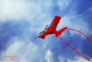 The Red Baron. by Evazgar