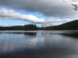 470 Burnt Meadow Pond Brownfield, Maine by crazygardener