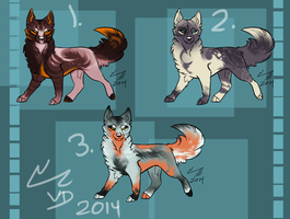 Doge Adoptables OPEN by Chaotic--Edge