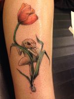 Coqui froggie happiness on a tulip by h-eri