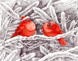 Christmas Cardinals by Zinfer