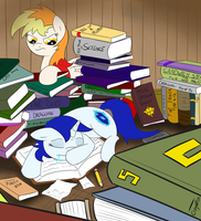 The Literate Wall by ColgateFIM