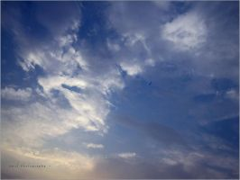 fly in the sky .. by Rmanah