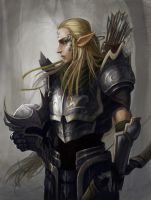 Elven soldier by justin-c0