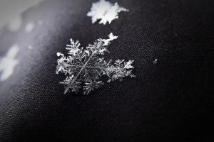 Snowflake by ColdWinter97