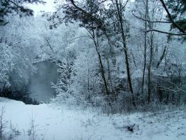 Winter.. by karly17