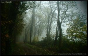 They've been a long time here by Miarath