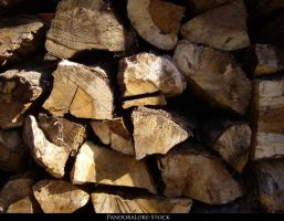Wood Texture 01 by AnitaJoy-Stock